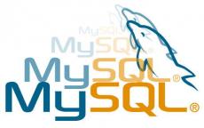 MySQL para Traccar y copias de seguridad